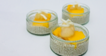 Chia Later Alligator Pudding Tropical Chia Seed Pudding