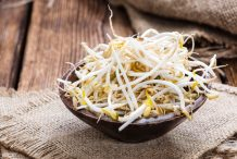 Mung Bean Sprout