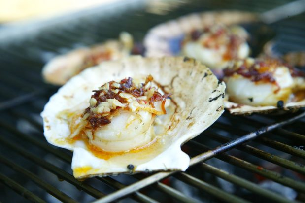 Grilled Scallops with XO Sauce