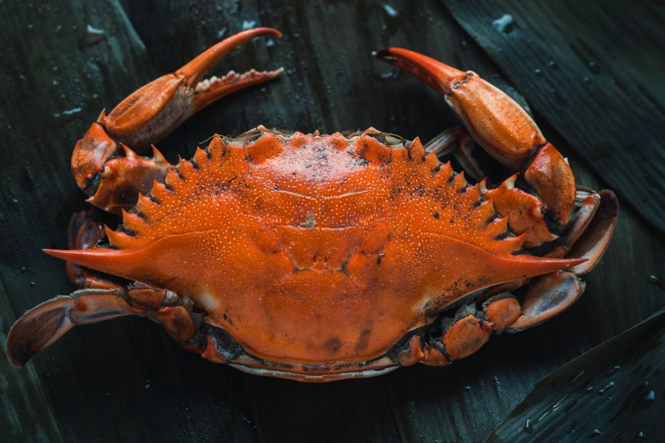 All You Need To Know About Cooking Crabs