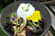 Stir Fried Chicken with Ginger and Black Fungus