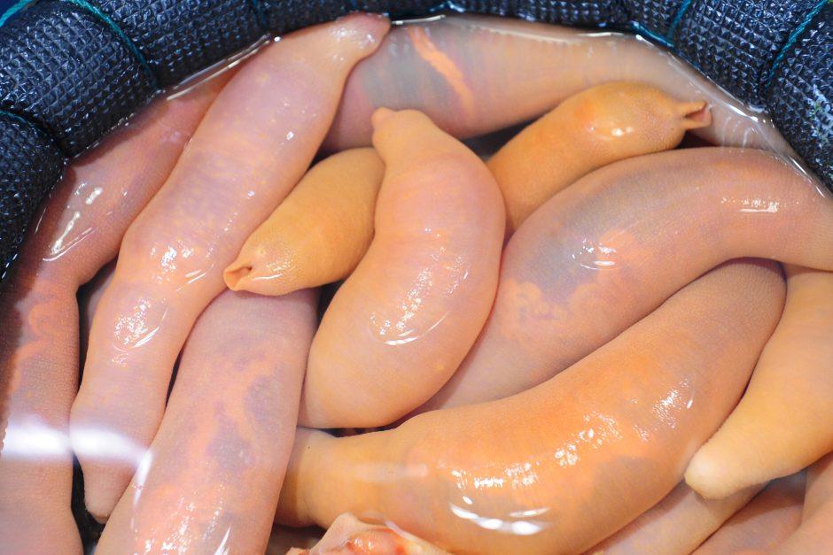 6 Weird Korean Seafood You Never Knew