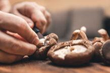 8 Umami Asian Mushrooms to Cook & Savour